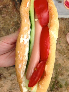 Cold hot dog for lunch- surprisingly ok
