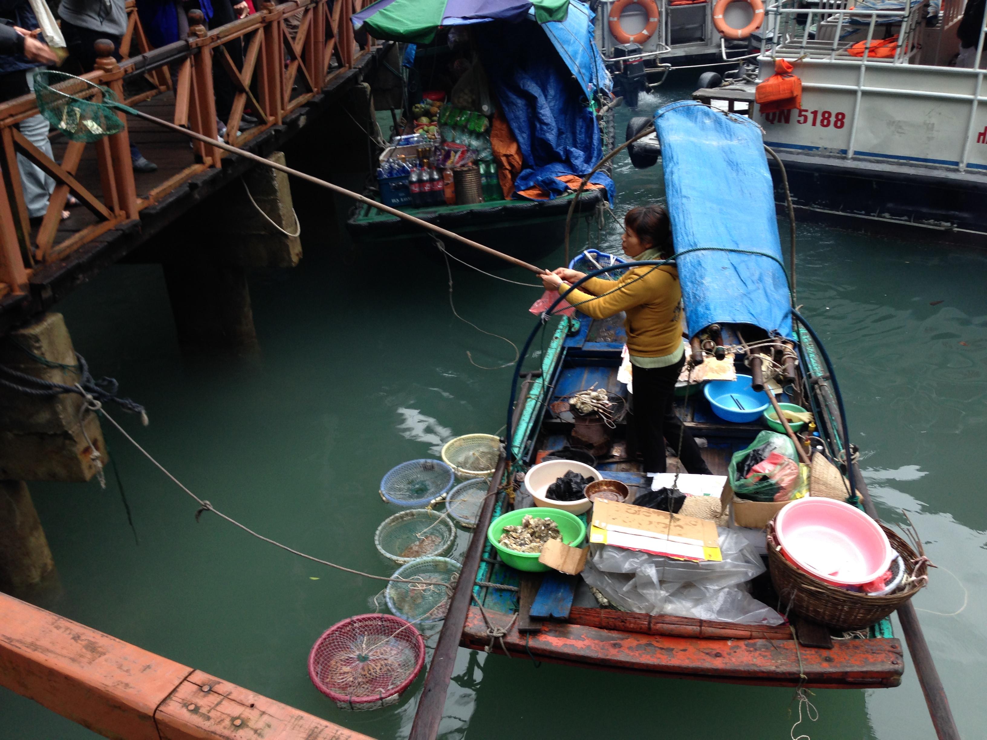 Vietnamese Monkeys Getting A Drink