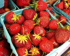 Fresh Jersey berries!
